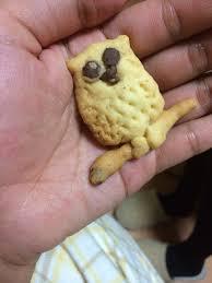 夏菜 クッキー 弟